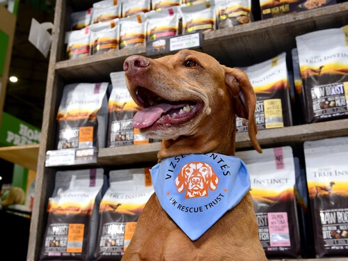 Innovative raw and inspired pet food launched at Crufts