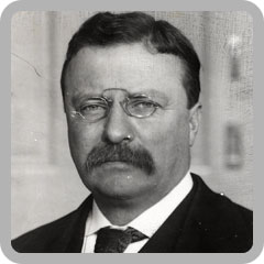 Theodore Roosevelt   Reading   A Golden Gateway to Greatness