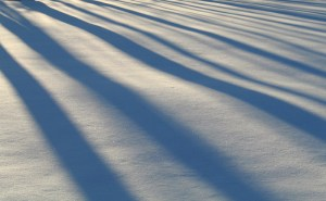snowlikefleece