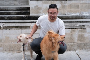 """I have a great friend group that motivates each other,"" said pre-med junior Tommy Le with his dogs Chloe (left) and Lucy. ""We know each other's habits and when we slack off, so we help each other work toward our goals."""