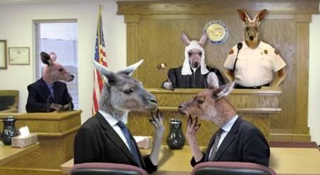 kangaroo-court