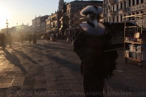 Venice Carnival-53