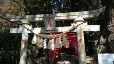 This gate leads to another much smaller shrine. It is quite common to have a few smaller ones accompanying the main ones.