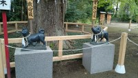 On the left side of the main shrine you find the dog and the boar. The latter is a substitute for the pig.