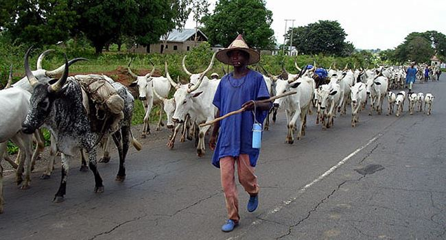 13 Council Chairmen, 64 Coordinators declare support for Law banning open grazing in Ebonyi 3