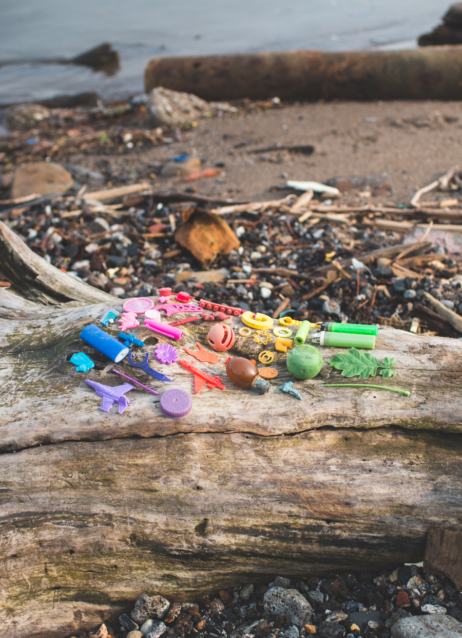 the dainty squid, beach trash, lake erie, plastic pollution