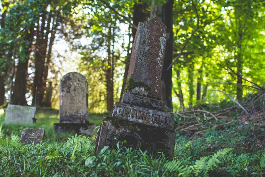 ferns, headstone, tombstone tourist