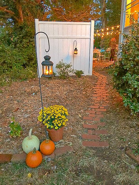 Entrance to backyard movie night-- path to backyard with lantern, mums, and pumpkins at head of path. In the distance, you can see the set up and string lights.