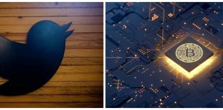 Twitter Working On Blockchain-Linked 'Collectibles' Tab