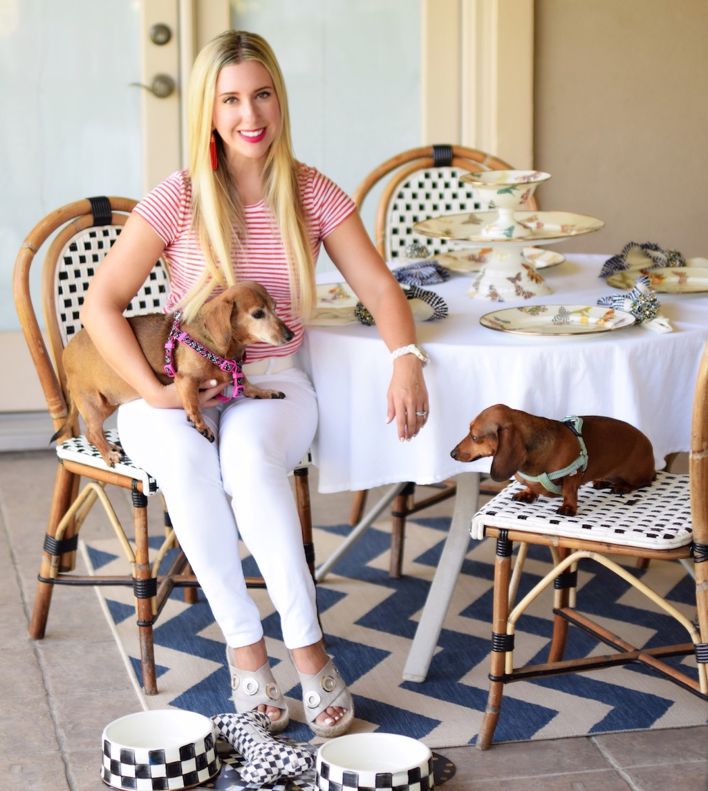 National Dog Day With MacKenzie-Childs | The Darling Petite Diva