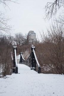 winter walk-11 small