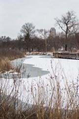 winter walk-3 small