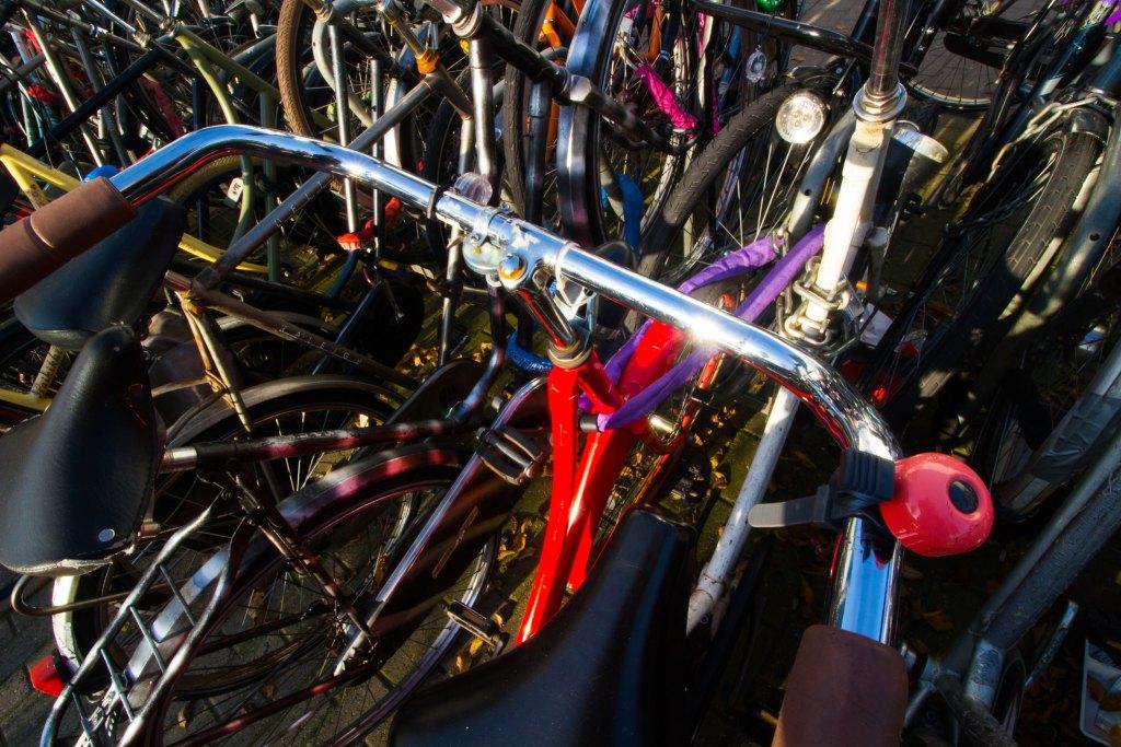 Shiny bikes.