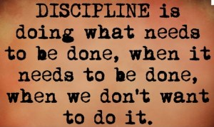 Practice Daily Discipline for business success