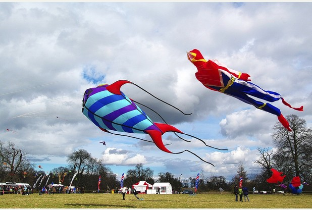 Strong winds cause cancellation of Calke Abbey kite flying day