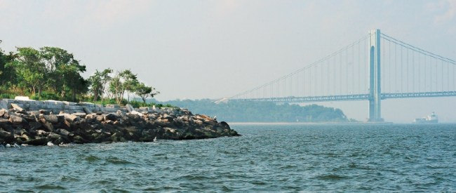 Celebrating New York's Seascape on World Oceans Day