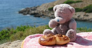 Teddy Bear Picnic Day
