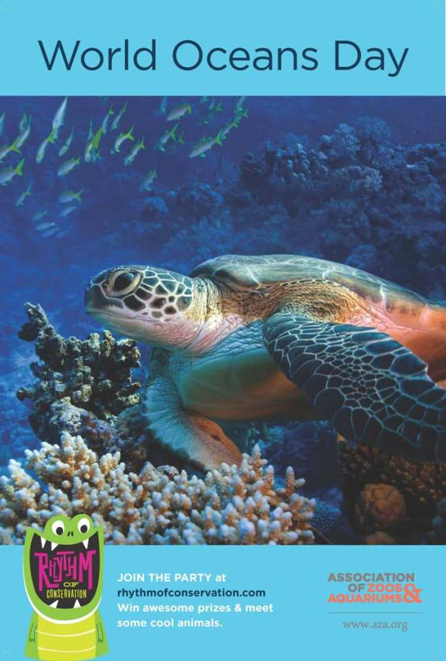 National Aquarium Celebrates World Oceans Day