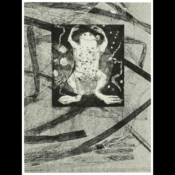 By: Diane Stemper Title: Toad print Medium: Intaglio