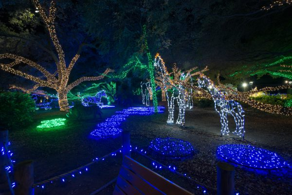 Zoo Lights Houston 2017 Dates