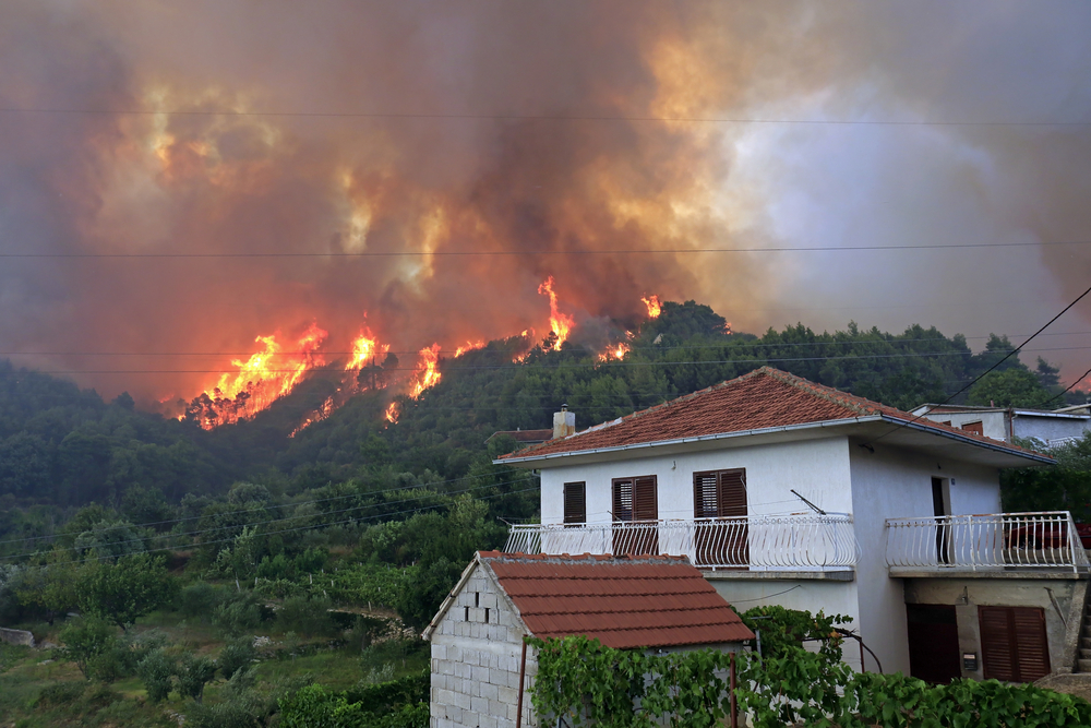 A wildfire burns down the forest near a building.