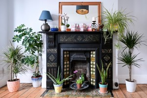 Plants of different shapes and sizes surround an Edwardian fireplace.
