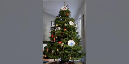 dcb_xmas_tree_850x425