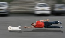 dog-pulling-man