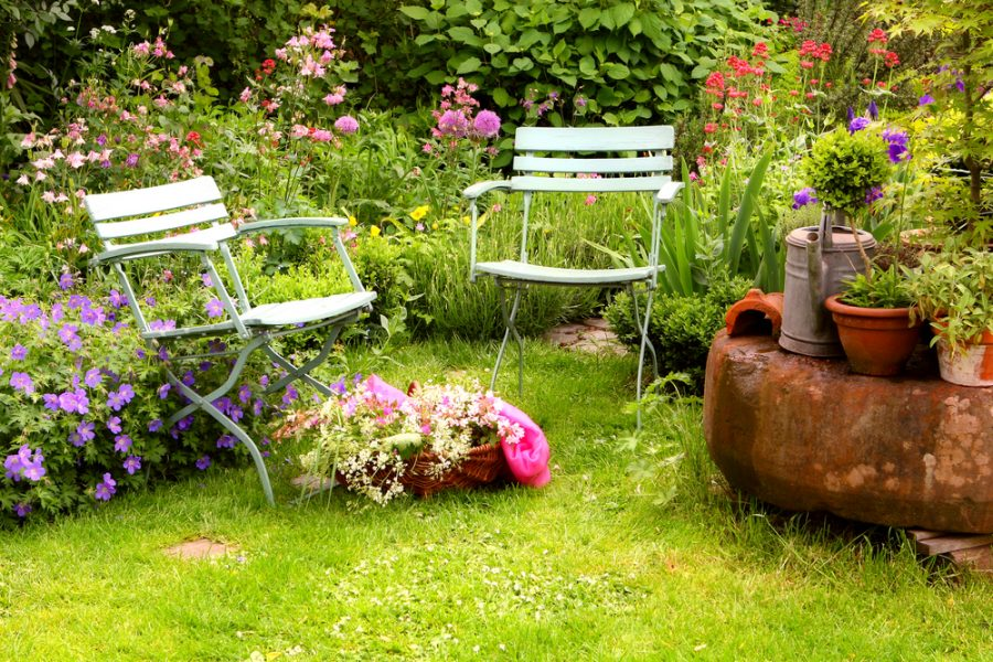 Beginnersgids voor milieubewust tuinieren