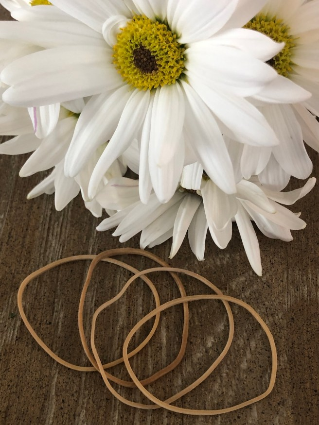 Daisies and Rubber Bands