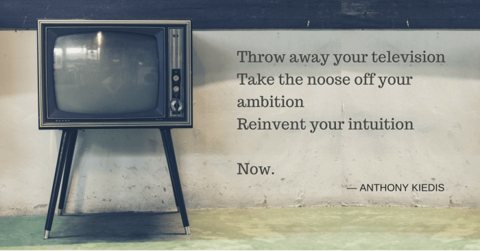 Throw away your television, take the noose off your ambition, reinvent your intuition - now.