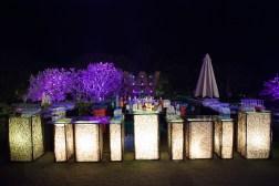 Elements sangeet decor bar Sahiba wedding Photo Tantra
