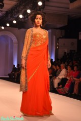 IBFW 2013 Adarsh Gill 20