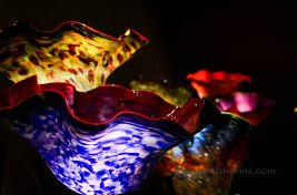chihuly-25a