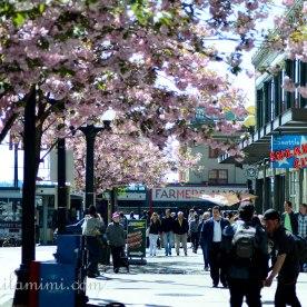 Seattle, Washington USA