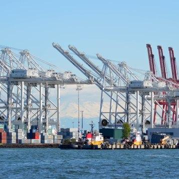 shipping terminals
