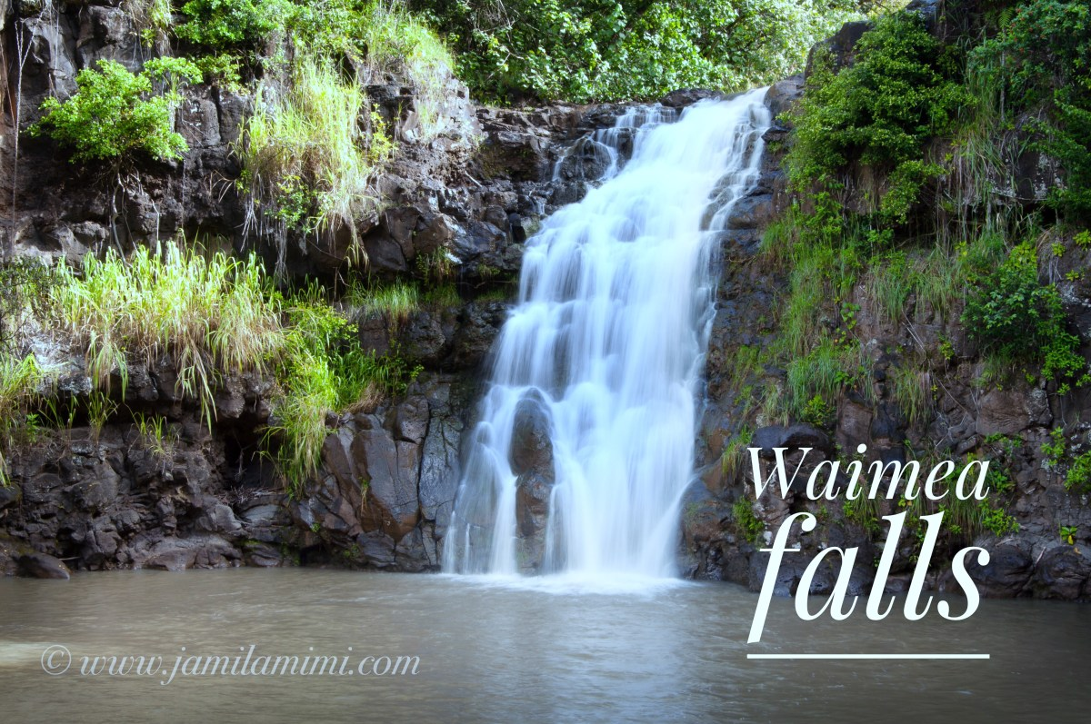 10 days in Waikiki : (day 8) First hiking adventure on North shore Oahu – Waimea Valley