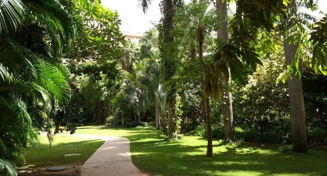 Green vistas @The Leela Palace Hotel Bengaluru