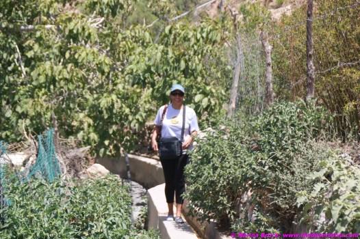 walking along a falaj