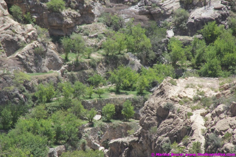 AT the very bottom of the wadi