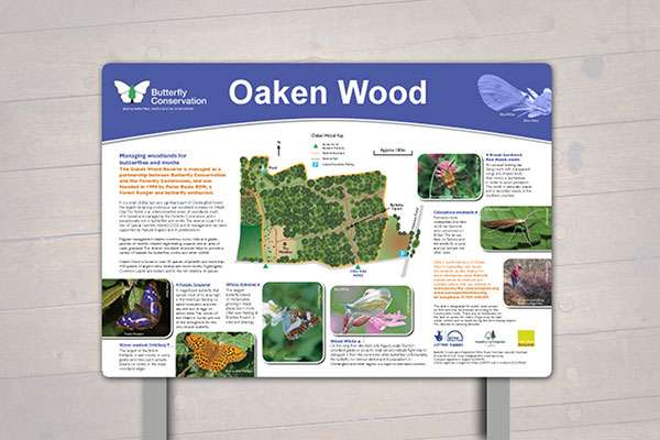 Countryside interpretation panel design for Butterfly Conservation