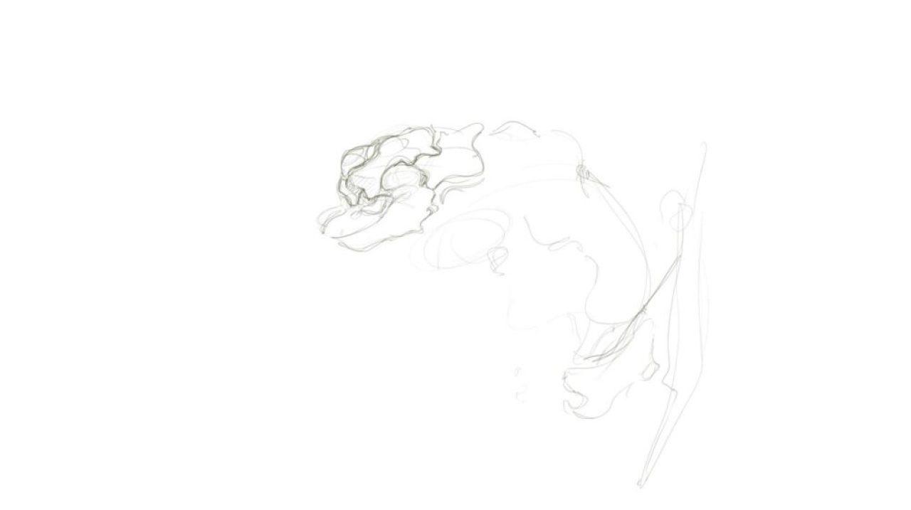 arachnid-creature-theDesignSketchboo[13]