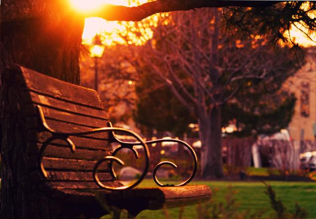 brown-wooden-bench-on-sunset-130453