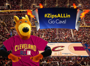 zippy is all in
