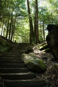 The Ledges Trail steps (PHOTO: M. Sophie Hamad/The Devil Strip)