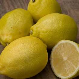 Eversfield Organic Lemons