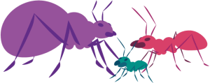 open source illustration of three ants of different sizes