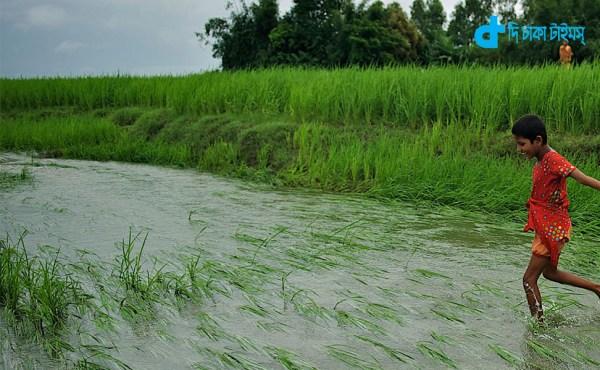 V of Bangladesh