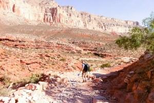Hiking the trail to Supai, Havasu canyon