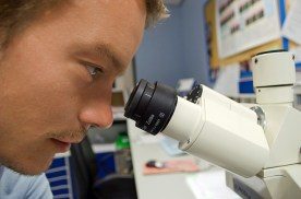Stem Cell Research - Type 1 Diabetes